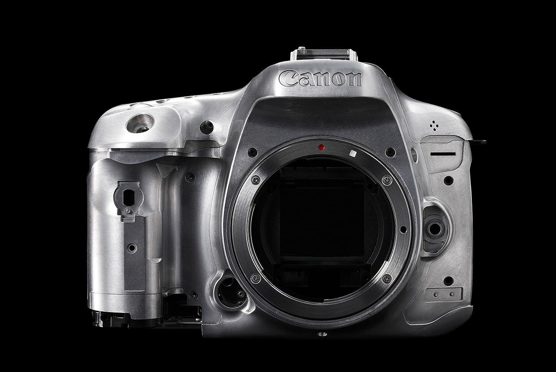 Canon EOS 7D Mark II - Cámara Digital (Cuerpo de la cámara SLR ...
