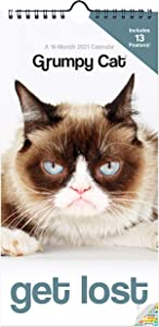 Grumpy Cat Calendar 2021 Bundle - Deluxe 2021 Grumpy Cat Mini Poster Calendar with Over 100 Calendar Stickers (Grumpy Cat Gifts, Office Supplies)