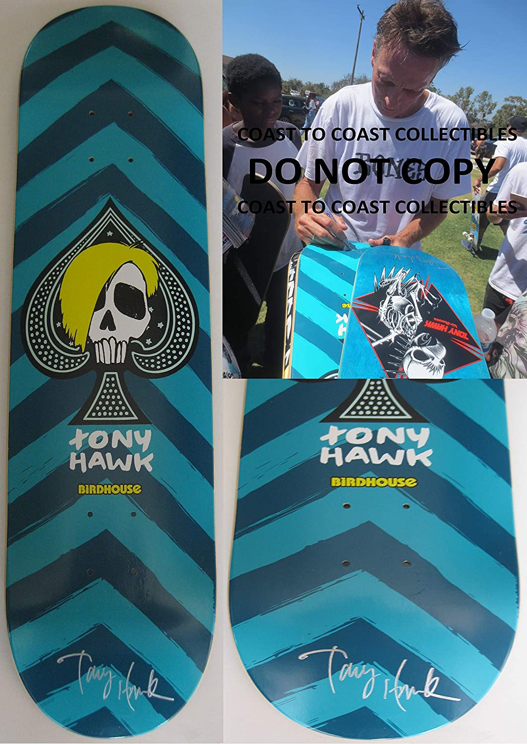 Tony Hawk Signed Autographed Birdhouse Skateboard Deck Coa With Pro Model The Exact Proof Photo Of Signing Will Be Included At Amazons Sports Collectibles
