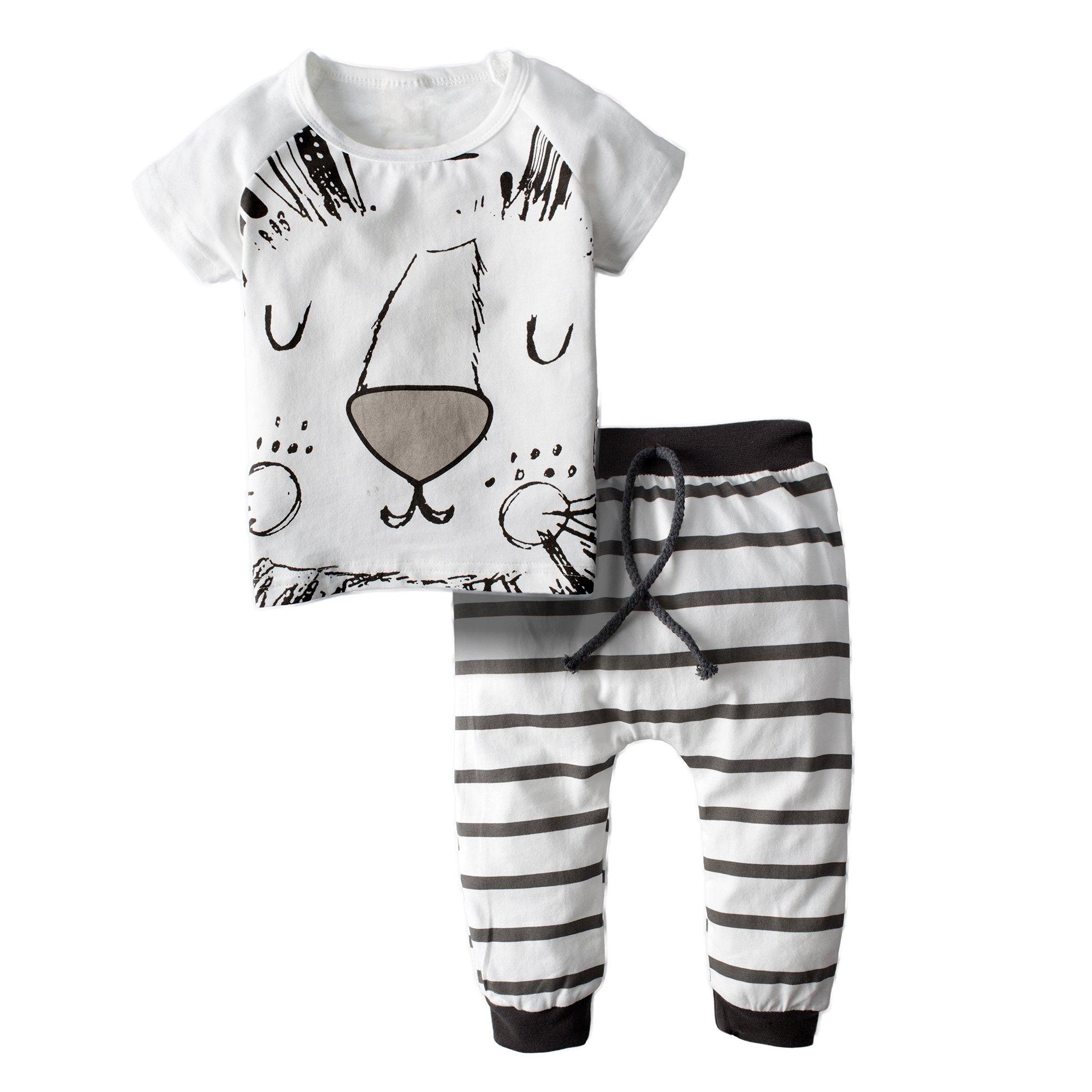 BIG ELEPHANT Baby Boys 2 Piece Cute Lion Short Sleeve Pants Clothing Set H79-70(3-6 Months