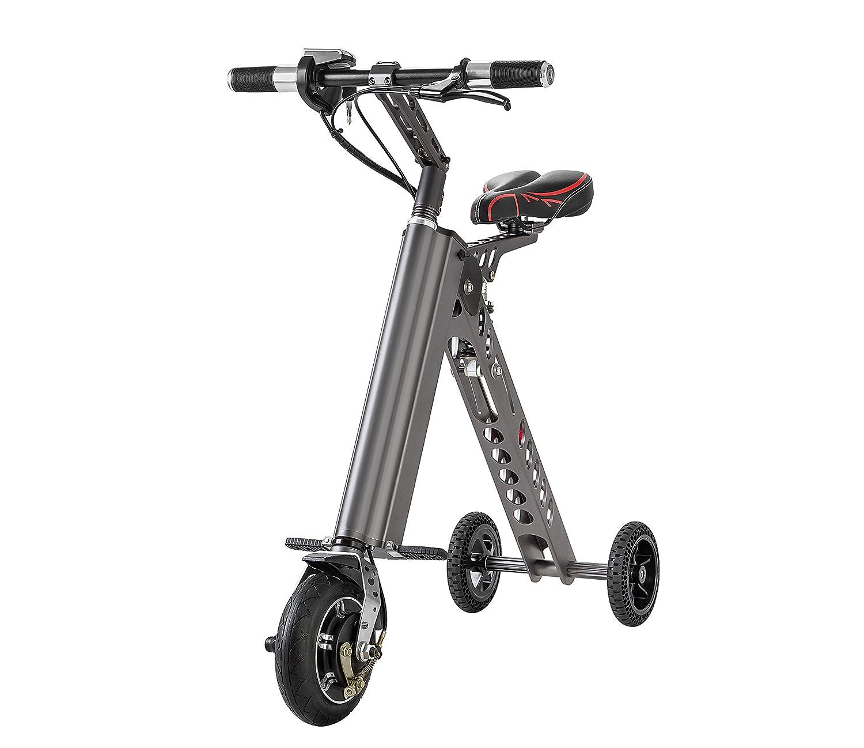 Plegable Auto Equilibrio e-Scooter monociclo (metálico gris)