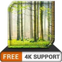 lluvia verde gratis HD - ambiente lluvioso relajante para superar el estrés - una aplicación en su televisor HDR 8k 4k y…