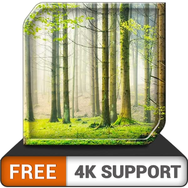 Amazon Com Free Green Rainfall Hd Relaxing Rainy Ambience To Overcome Stress An App On Your Hdr 8k 4k Tv And Fire Devices As A Wallpaper Theme For Mediation
