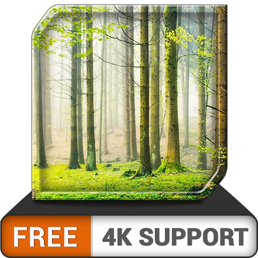 FREE Green Rainfall HD - Relaxing Rainy Ambience to overcome Stress - An App on your HDR 8K 4K TV and fire devices as a wallpaper  & theme for mediation & peace