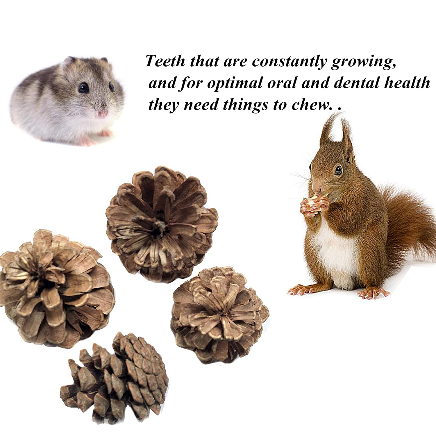 Guinea Pigs Rabbit Pet Tooth Chew Toys Organic Natural Apple Wood Grass Cake Ideal for Bunny Chinchilla VCZONE Bunny Chew Toys Hamsters Teeth Grinding