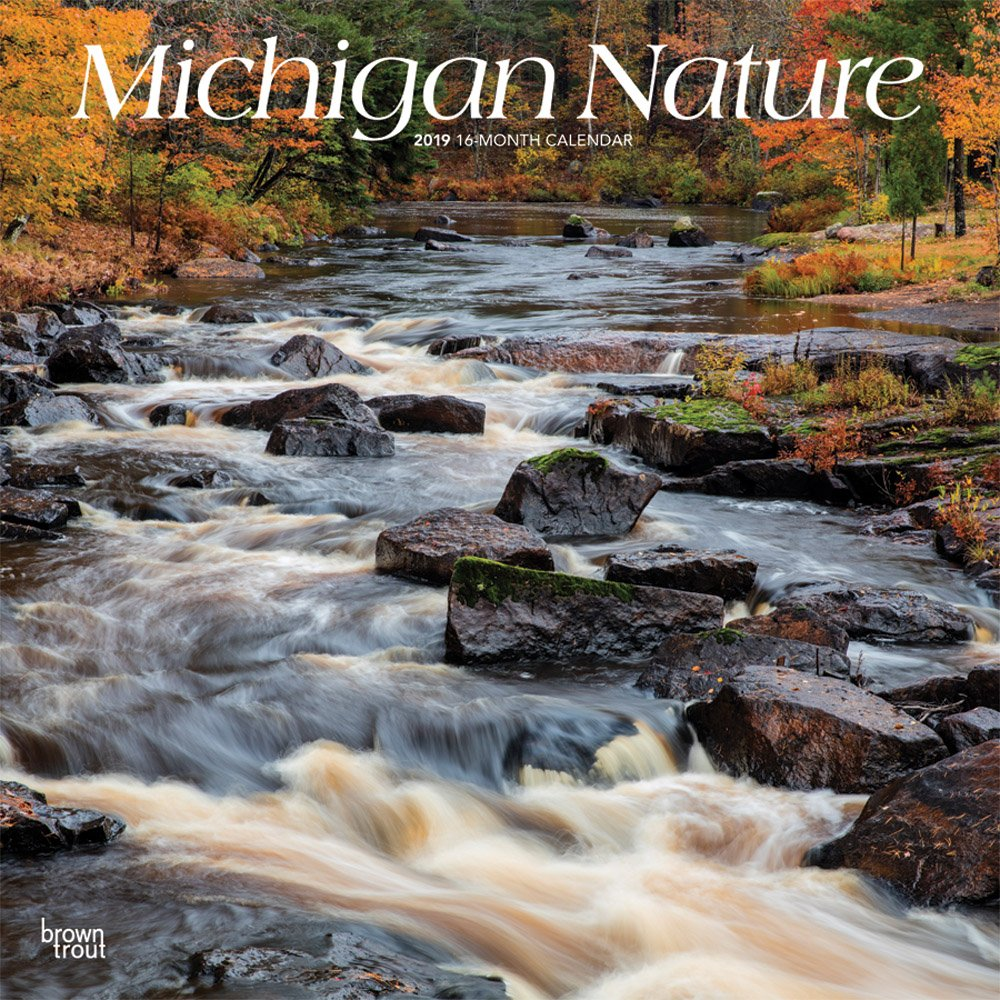 Download Michigan Nature 2019 12 x 12 Inch Monthly Square Wall Calendar, USA United States of America Midwest State Wilderness (Multilingual Edition) PDF