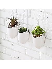 Gardening Pots, Planters & Accessories | Amazon.com