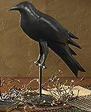 Large Primitive Iron Crow