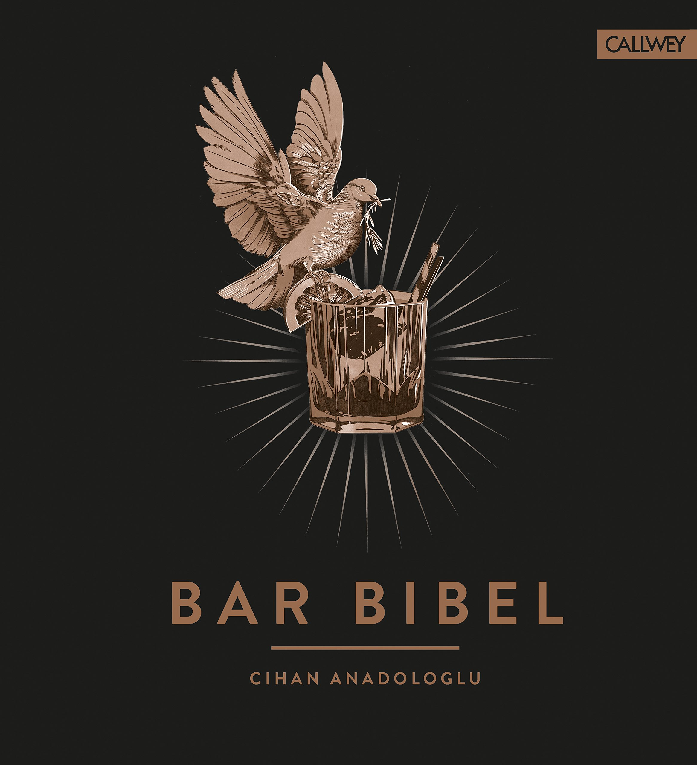 Bar Bibel: Amazon.de: Cihan Anadologlu, Daniel Esswein: Bücher