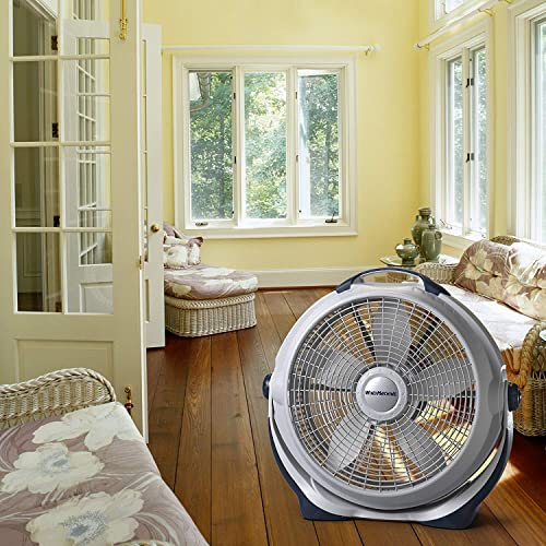best floor fans consumer report