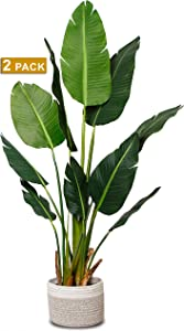 """Elpidan- Artificial Bird of Paradise Palm Tree Plant Decor 60"""", Fake Banana Tree Potted Silk Plants, Faux indoor House Plants 