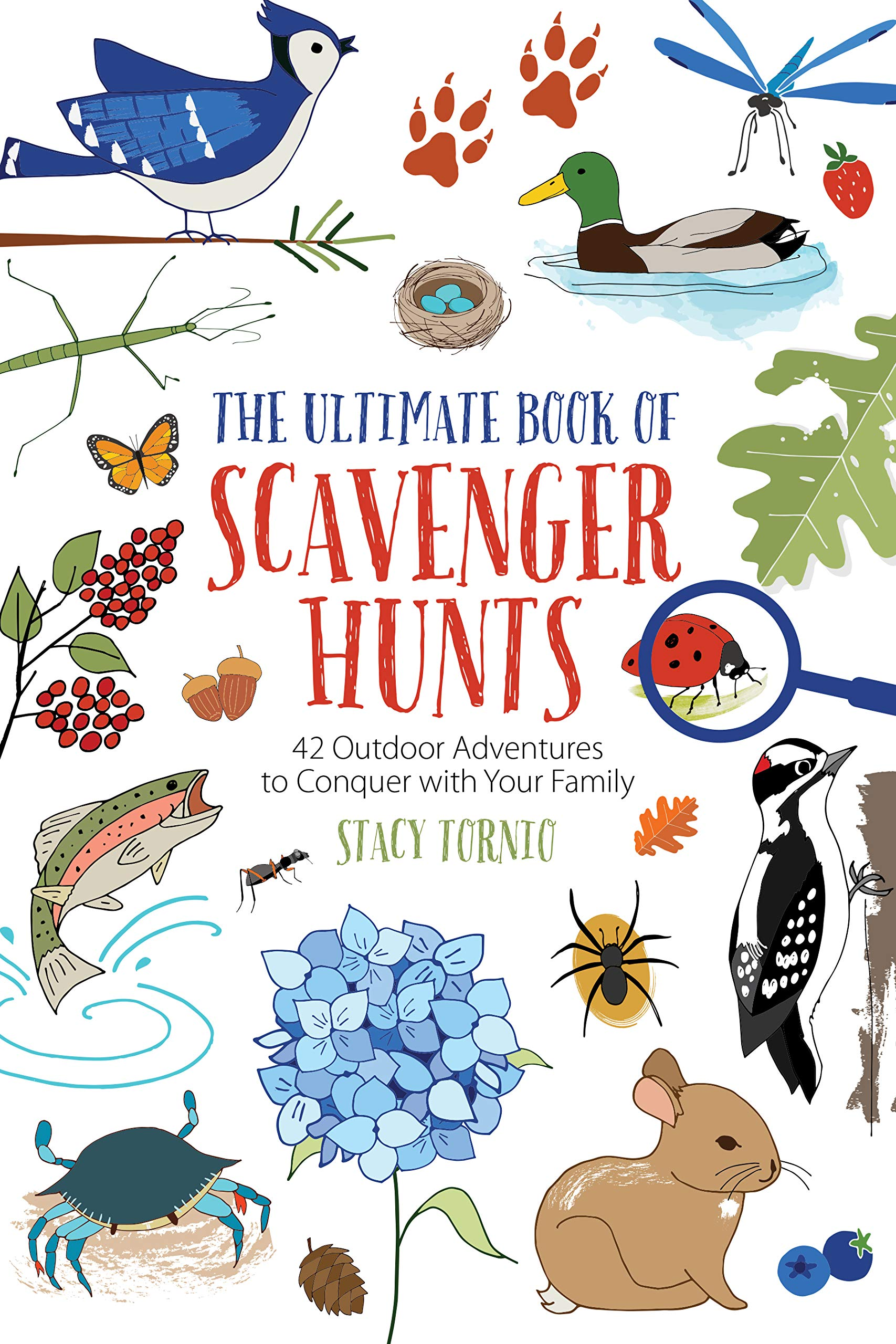 The Ultimate Book Of Scavenger Hunts 42 Outdoor Adventures To Conquer With Your Family Tornio Stacy 9781493051533 Amazon Com Books