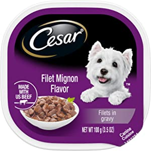 CESAR Gourmet Filets in Sauce Wet Dog Food, Pack of 24