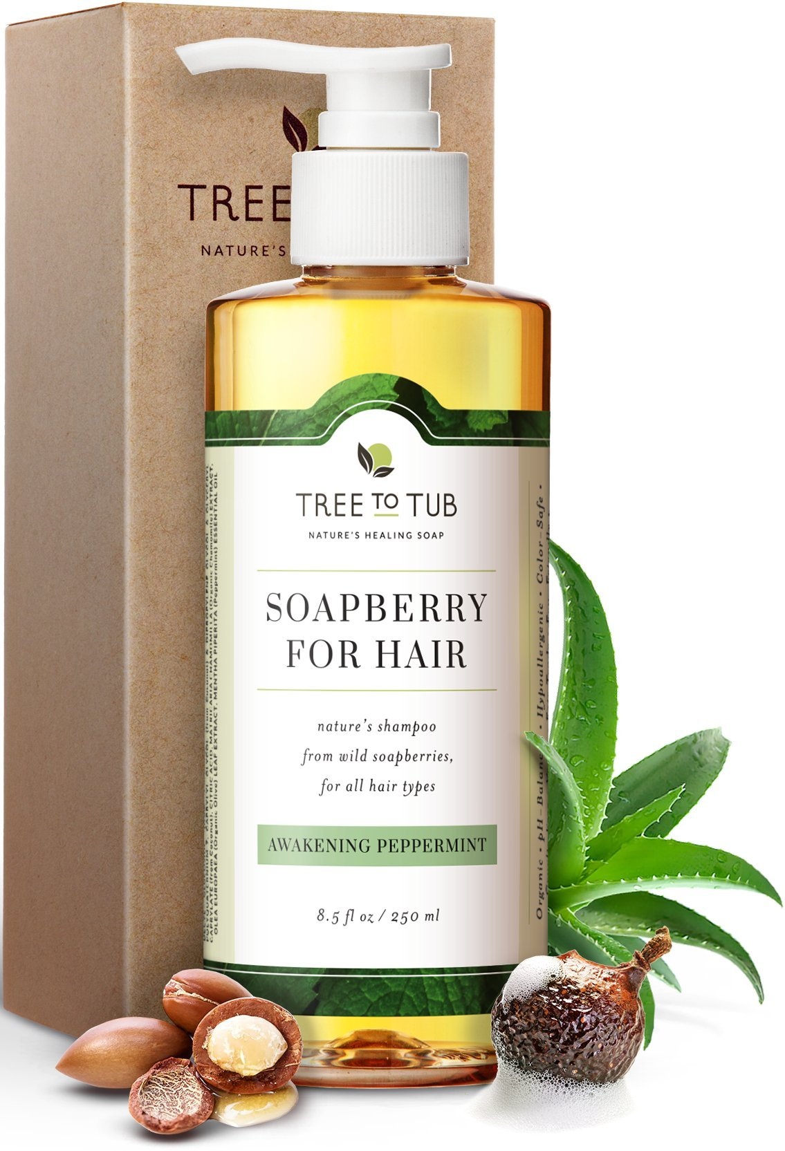 Real, Mint Shampoo For Oily Hair. The Only pH 5.5 Balanced Itchy Scalp Shampoo for Men and Women with Sensitive Skin – Peppermint Argan Shampoo with Organic Wild Soapberries, 8.5 oz—by Tree To Tub