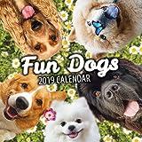 Fun Dogs 2019 Dog Wall Calendar