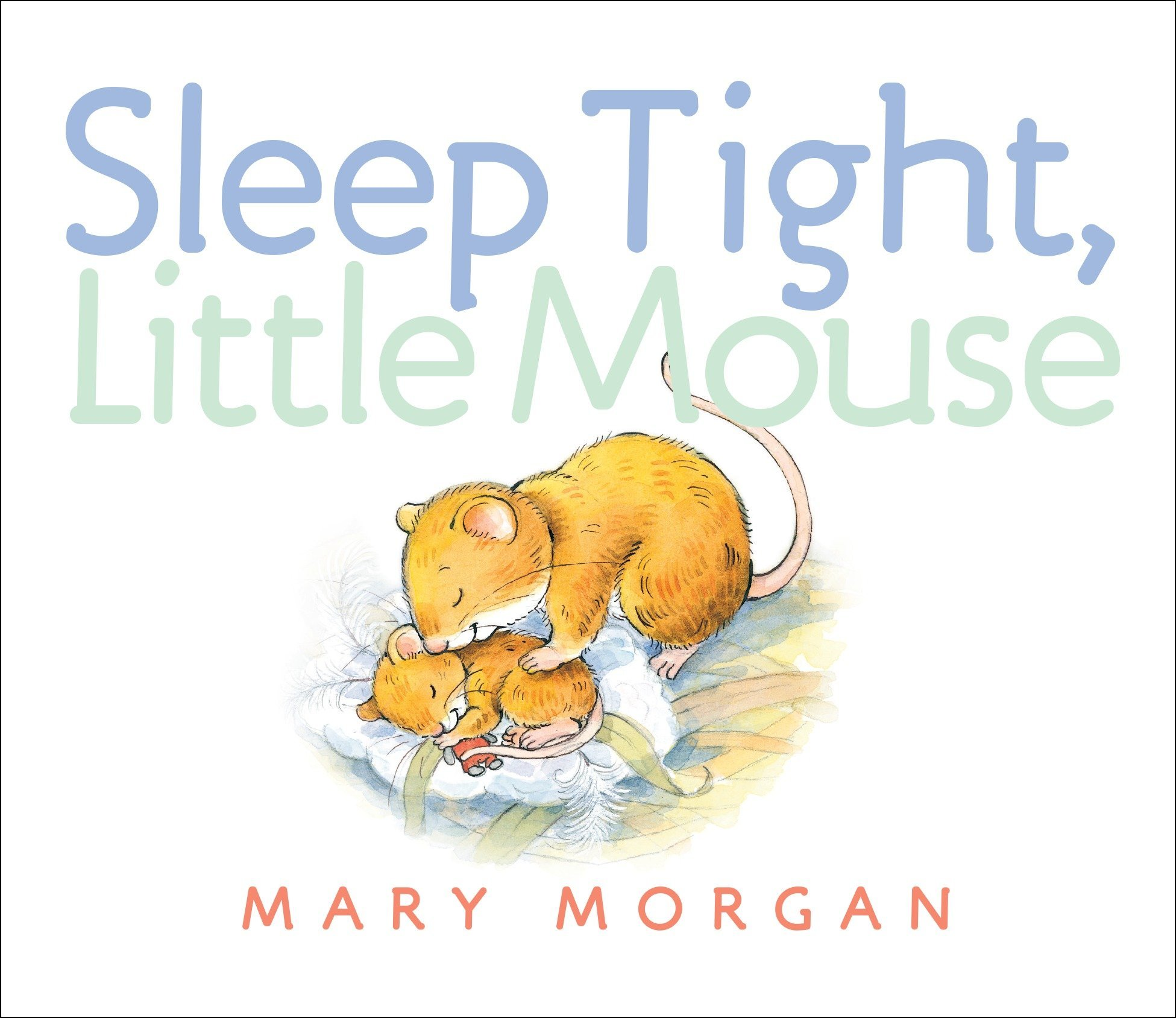 Download Sleep Tight, Little Mouse pdf