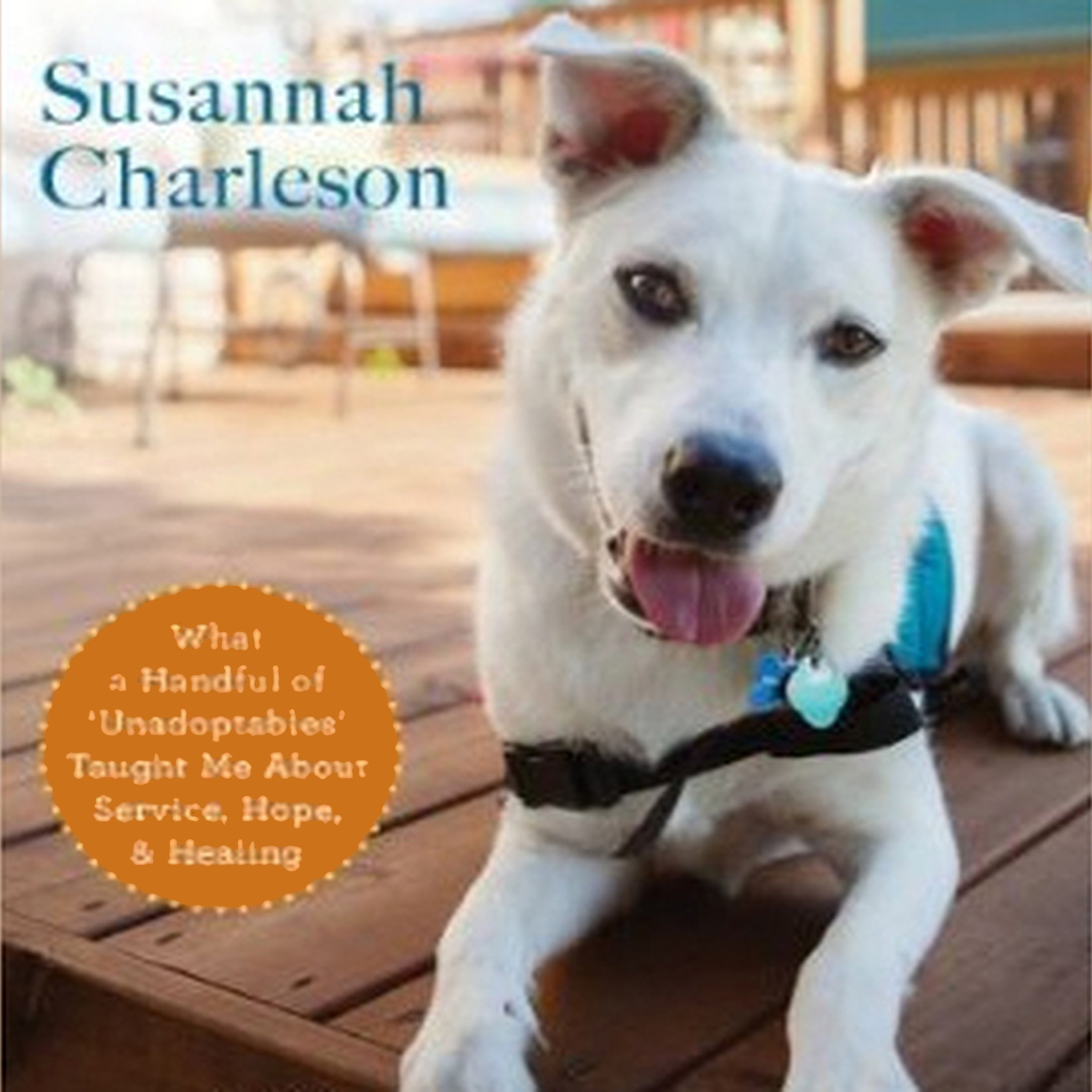 The Possibility Dogs: What a Handful of 'Unadoptables' Taught Me about Service, Hope, and Healing