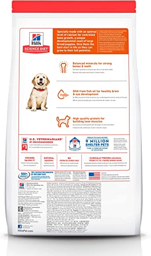 Hill's Science Diet Dry Dog Food, Puppy, Large Breed, Chicken Meal Oats Recipe