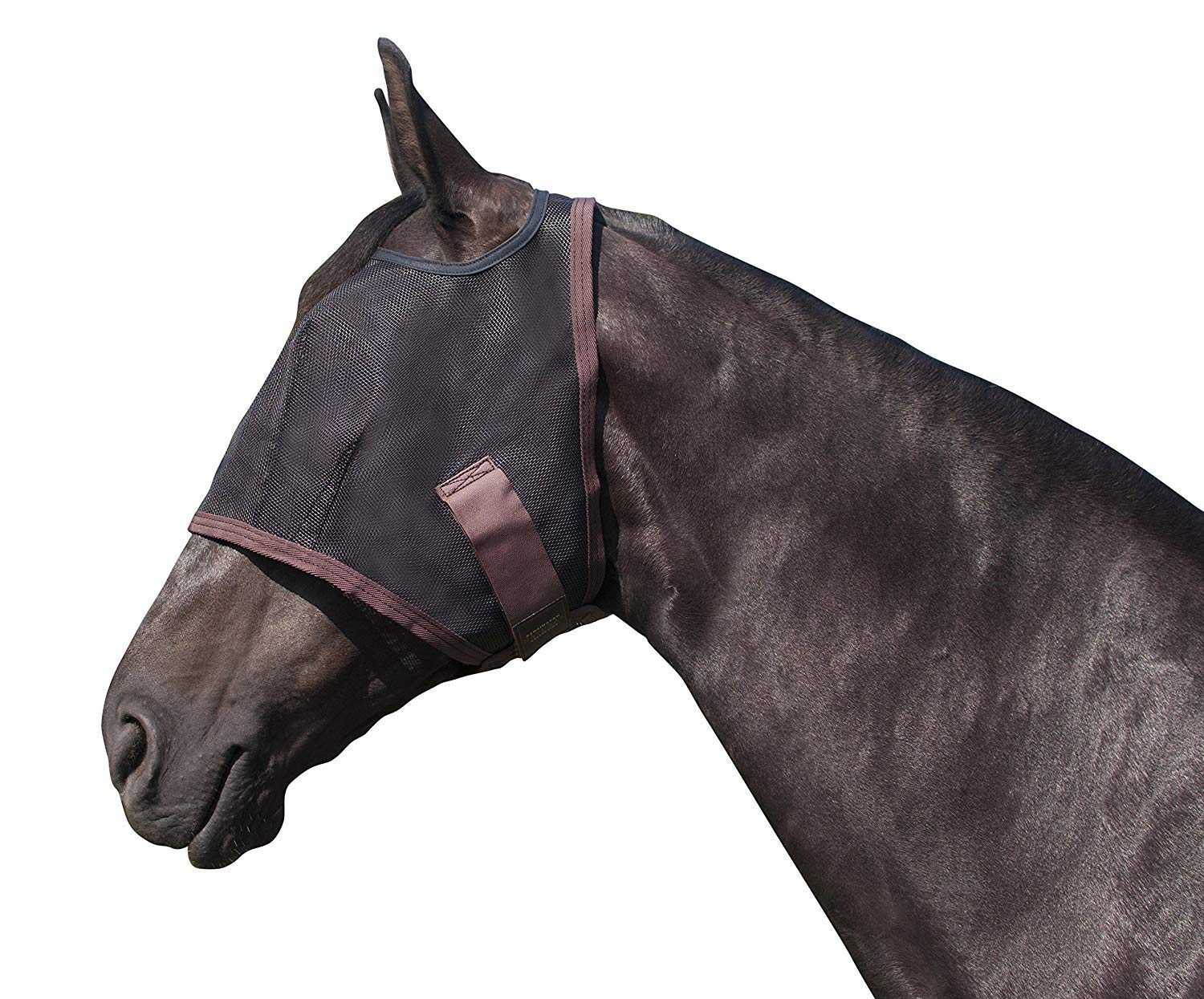 Kensington Natural Fly Mask with Web Trim - Protects Horses Face Eyes from Biting Insects and UV Rays While Allowing Full Visibility - Ears and Forelock Able to Come Through The Mask (Large, Black) by Kensington Protective Products