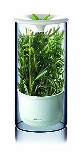 Fresh Herb Preserver For Fridge - Art & Cook Herb Keeper in Green/White