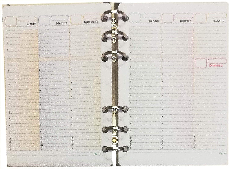 Recambio Recarga para agenda organizadora formato A6 Personal con 6 anillas 11 x 16 cm Agenda Perpetua