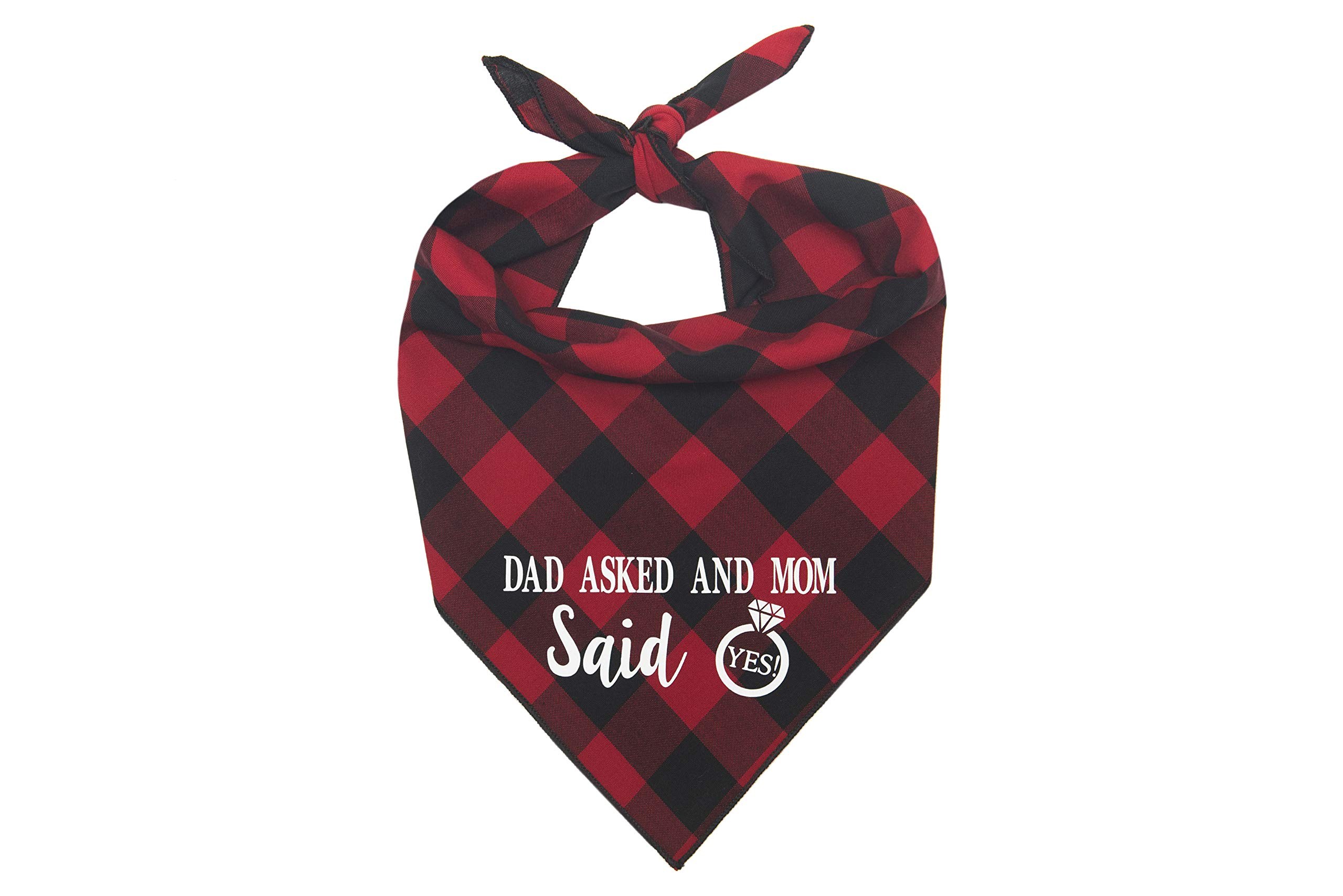 Willowear Dog Bandanas Dad Asked and Mom Said Yes Red Large