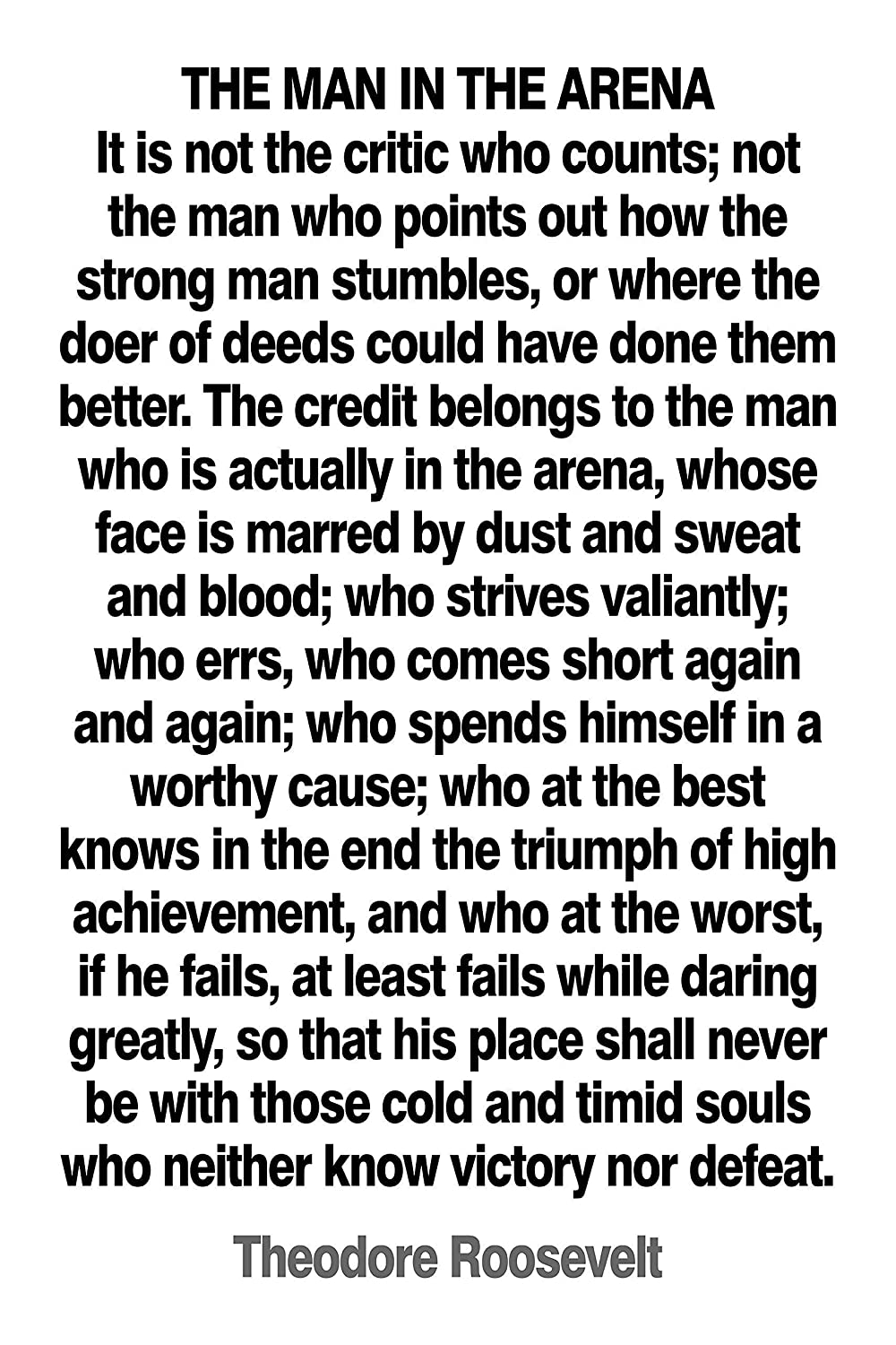 Theodore Roosevelt Man in the Arena Literary quote Art print gift poster gift