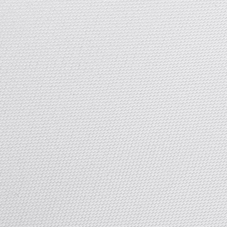 Etc. Neewer Fotograf/ía Difusi/ón Hoja Papel 30x39 Cent/ímetros Filtro Difusor Luz Enrollable Durable Resistente al Agua para Estudio Fotogr/áfico Producto Fotograf/ía Retratos