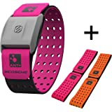 Scosche RHYTHM+ Heart Rate Monitor Armband - Pink - Optical Heart Rate Armband Monitor With Dual Band Radio ANT+ and Bluetooth Smart by Scosche