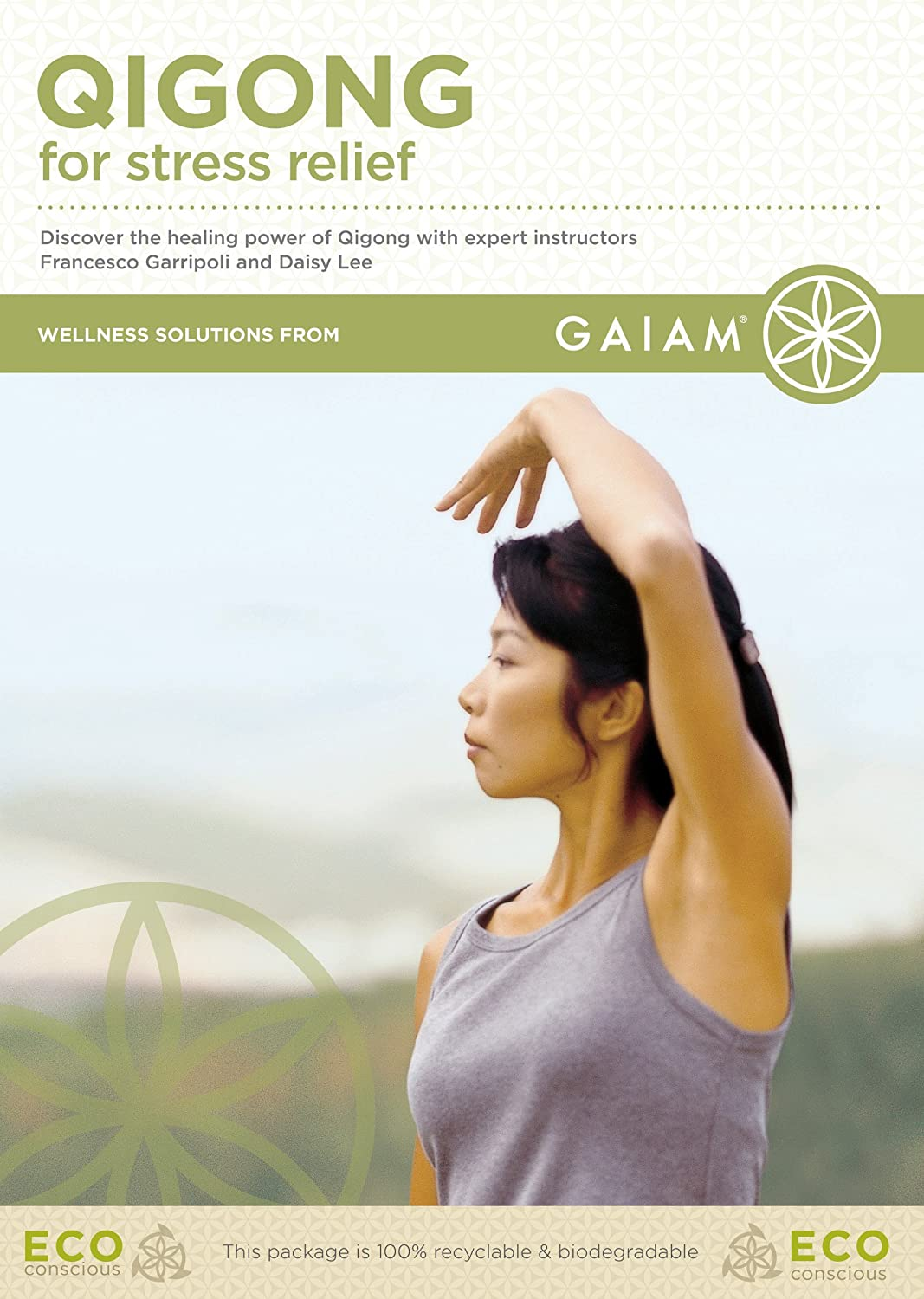 qigong for stress relief dvd