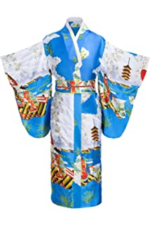Amazon.com: Geisha Wig Costume Accessory: Clothing