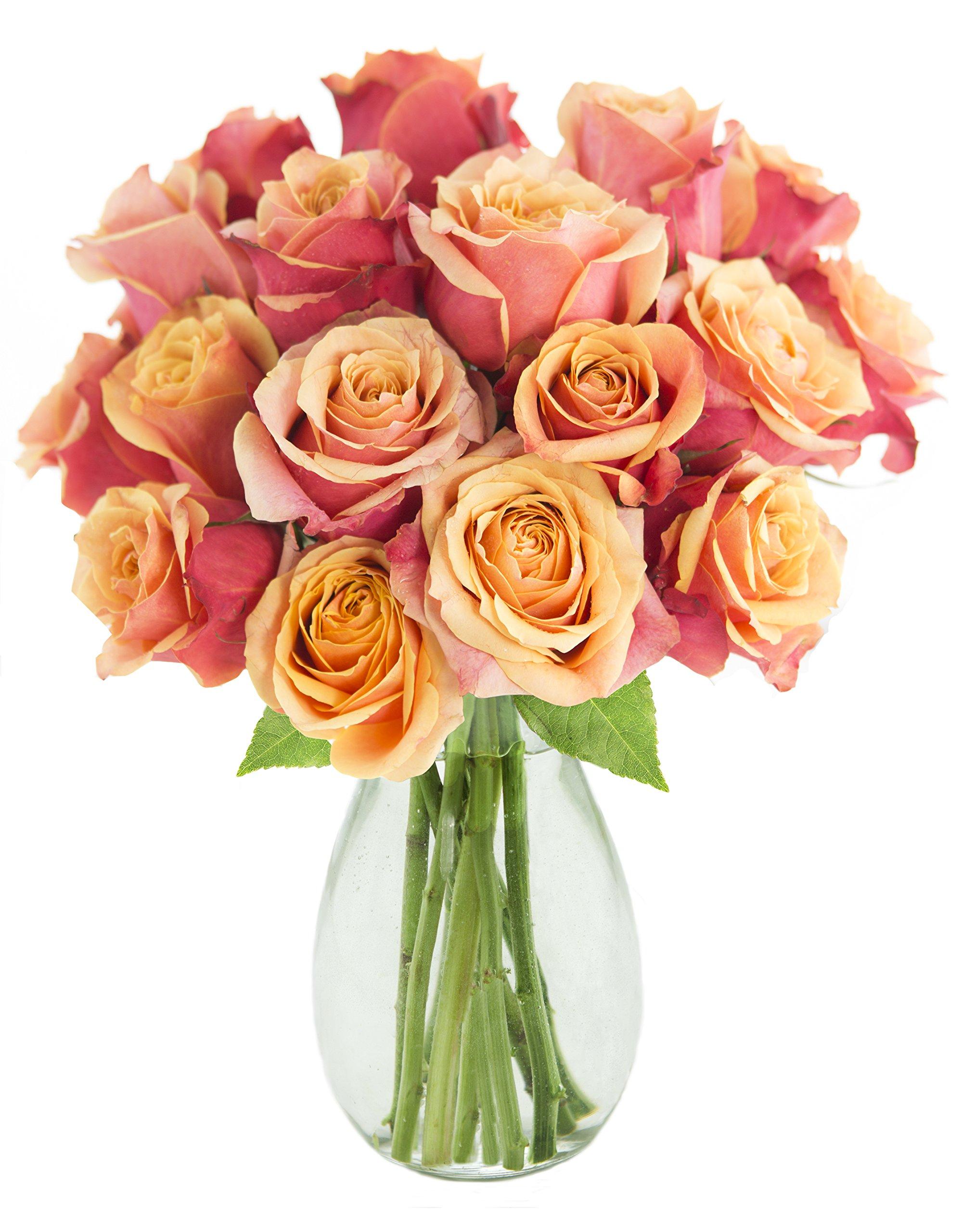 Bouquet of 18 Fresh Cut Orange Roses (Farm-Fresh, Long-Stem) with Free Vase Included