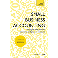 Small Business Accounting: The jargon-free guide to accounts, budgets and forecasts (Teach Yourself)