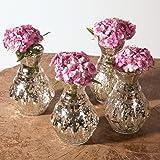 Luna Bazaar Silver Bernadette Mini Mercury Glass Vase Set of 4