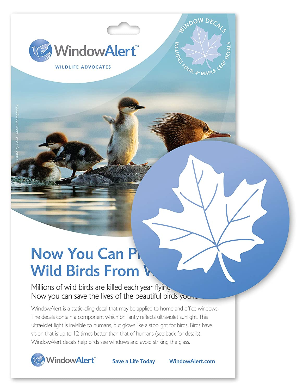 Amazon com windowalert maple leaf decals bird window alert decals garden outdoor