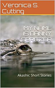 MY NAME IS DANNY SPRITZER: Akashic Short Stories
