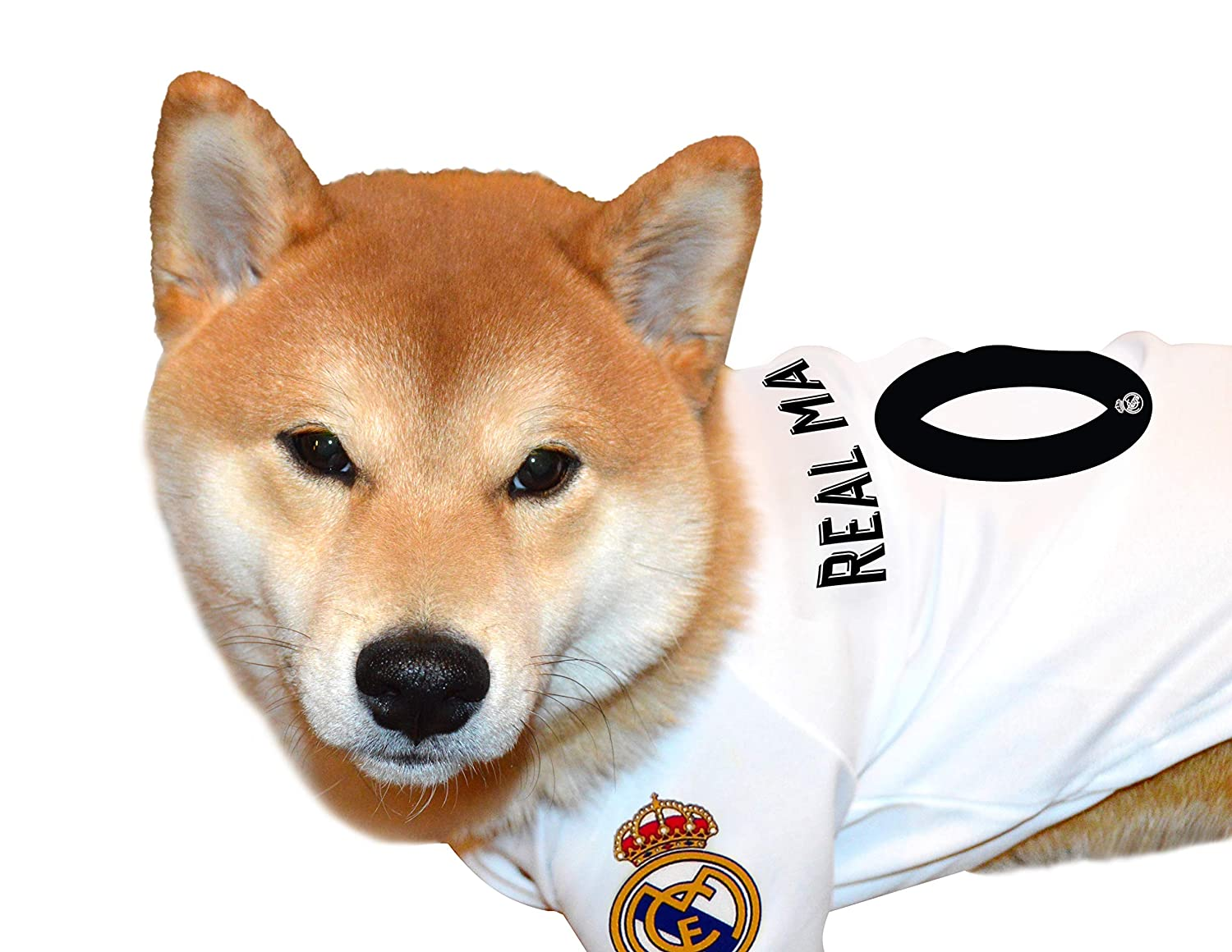 competitive price e39d3 2fd8b Real Madrid Soccer Pet Jerseys Shirts Collars Bandanas & Football Toys for  Dogs & Cats. - MLS Sports Licensed Dog Apparels, Cute Pet Accessories & Fun  ...