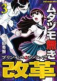 ムダヅモ無き改革 プリンセスオブジパング (3) (近代麻雀コミックス)