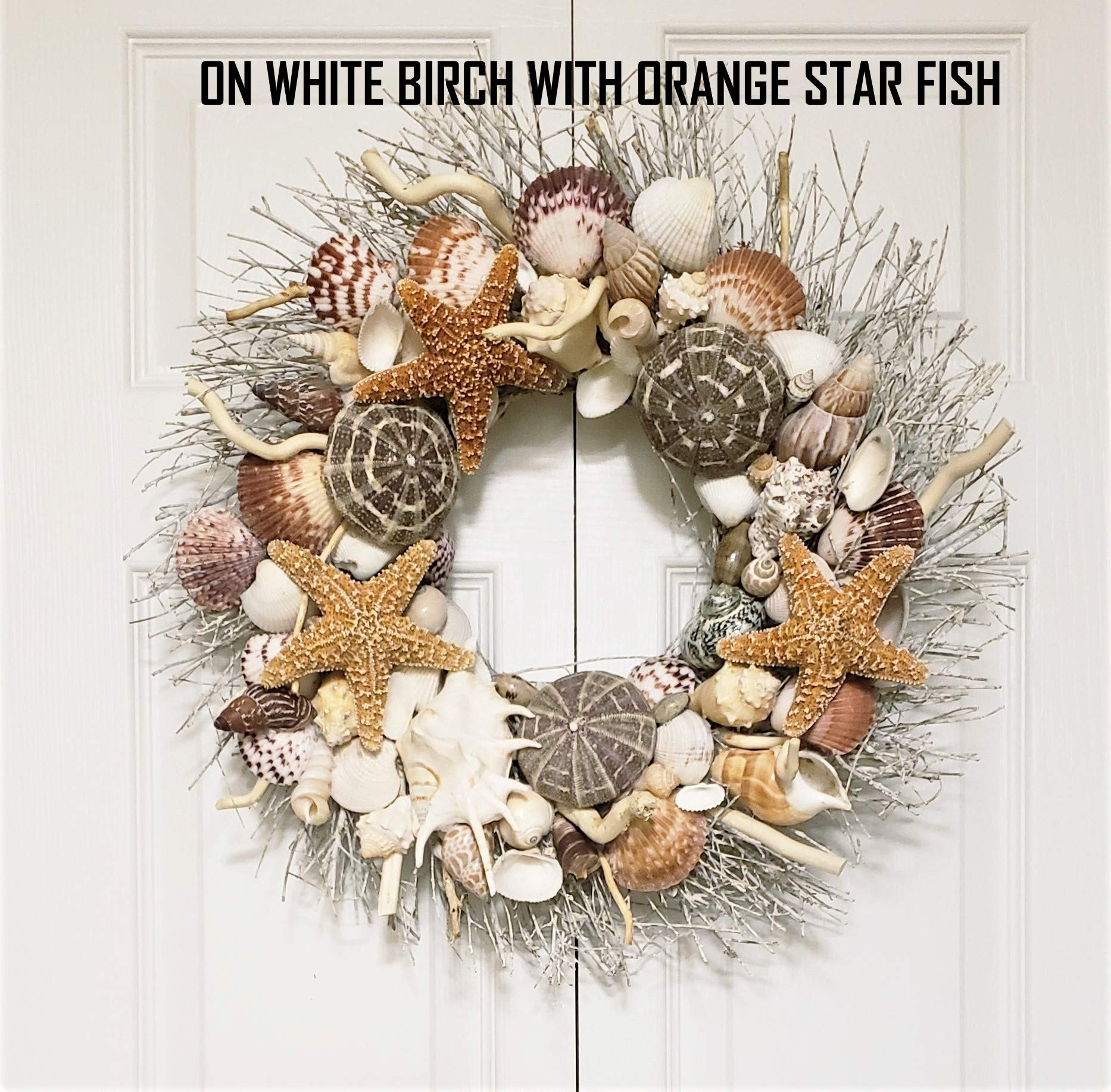 21'' Sea Shell Wreath on Birch Twig with Exotic Sea Urchins in 4 Designs by Ellie's Collections, Etc. (Image #5)