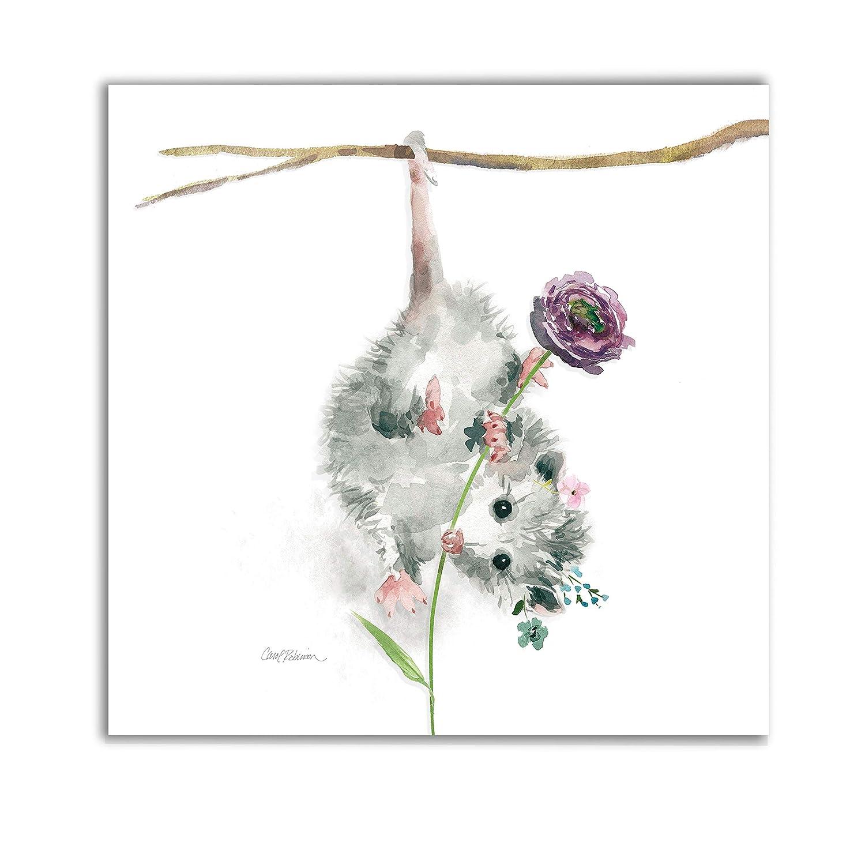 Renditions Gallery Garden Critter Possum Animal Decor for Nursery, Kid Room, Playroom, Wall Art, 24X24