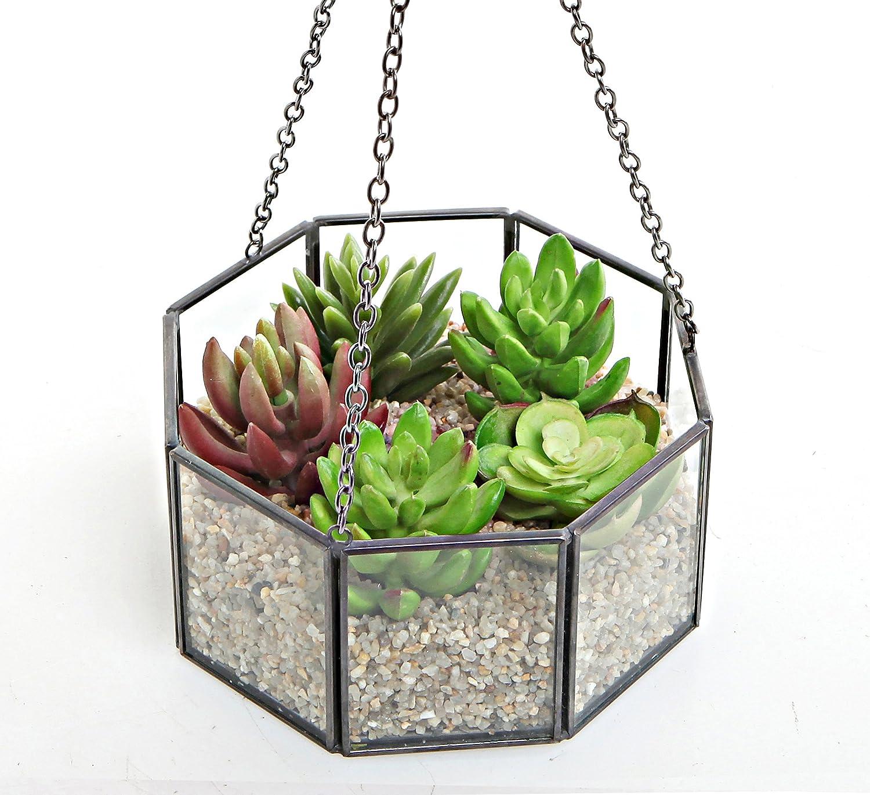 Amazon Com Mygift Decorative Octagon Shape Open Top Glass Hanging
