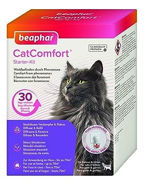 Beaphar Catcomfort Gatos Difusor y Recarga, 48 ML: Amazon.es: Productos para mascotas