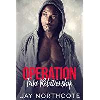 Operation Fake Relationship: An MM Christmas Romance (English Edition)