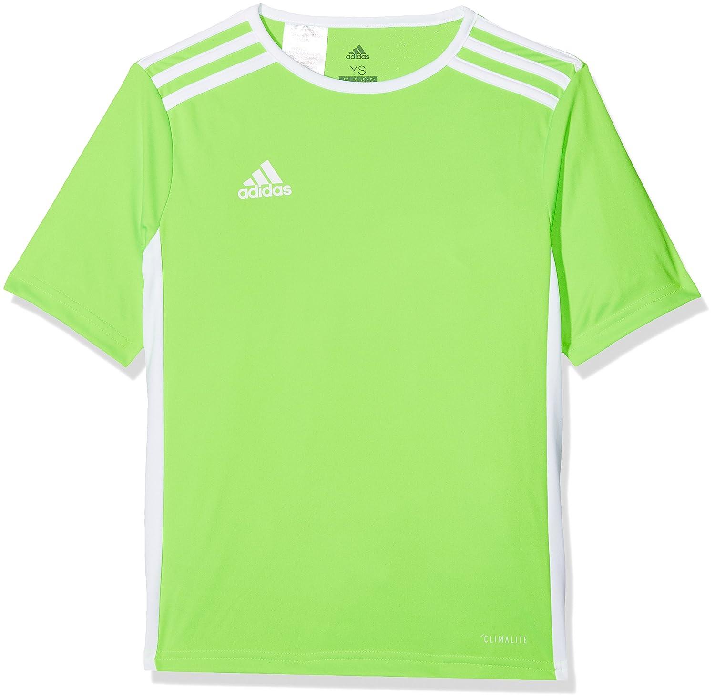 Adidas CE9758, Maglietta Uomo, Verde, XL