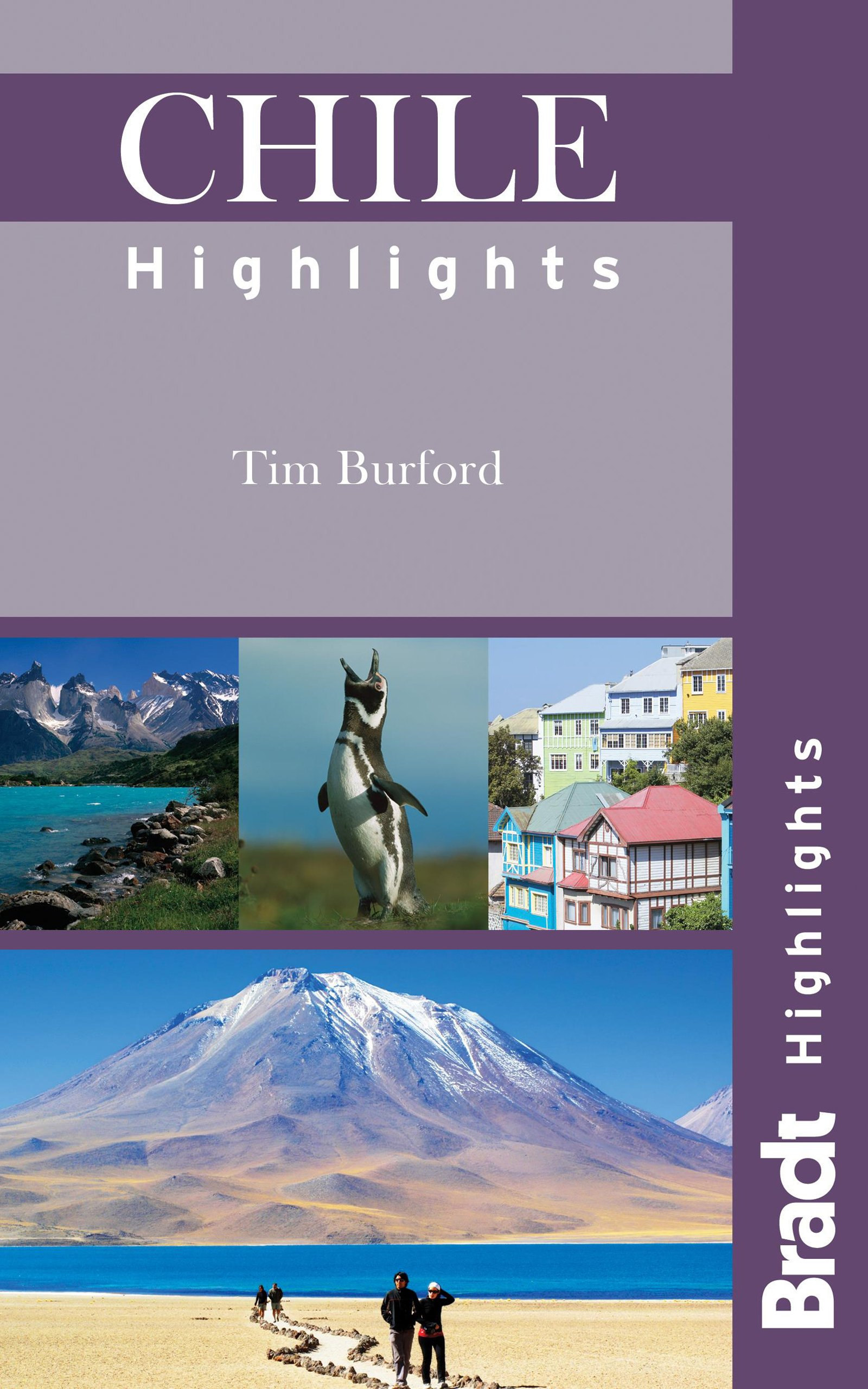 Chile Highlights (Bradt Highlights) pdf epub