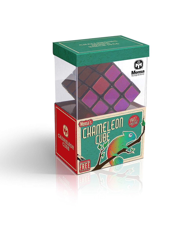 Mensa IQ-1081 Chameleon 3D Cube Puzzle Silver