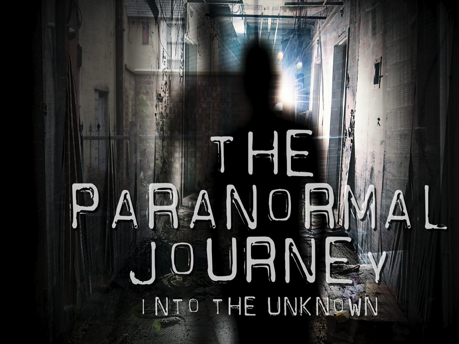 Amazon com: The Paranormal Journey:Into the Unknown: Gavin