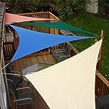 Sunshades Depot 8' x 8' x 11.3' Sun Shade Sail