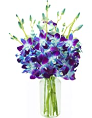 KaBloom Exotic Sapphire Orchid Bouquet of Blue Orchids from Thailand with Vase