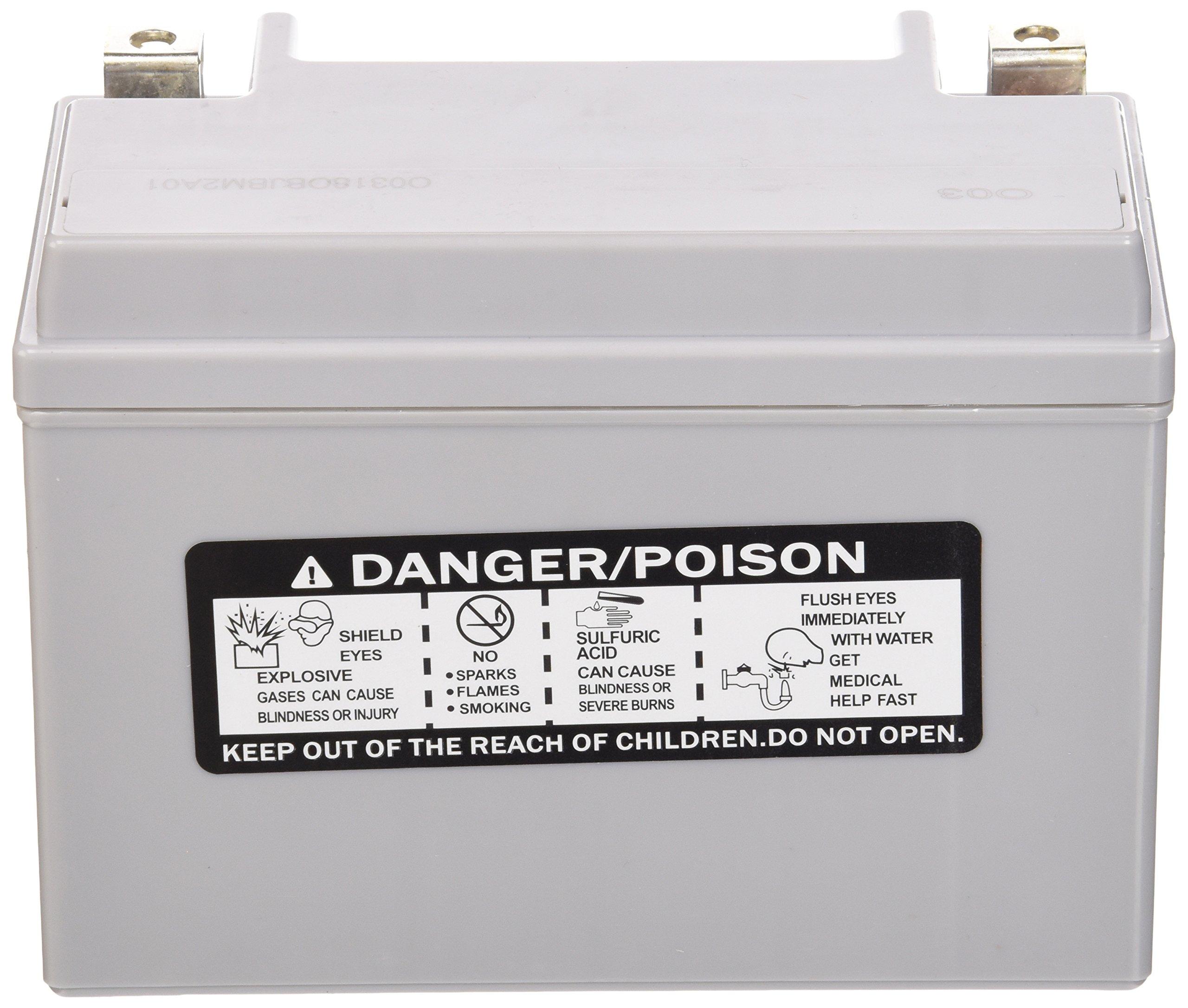 Power-Sonic (PTZ14S) Sealed Maintenance Free Powersport Battery by Powersonic (Image #2)
